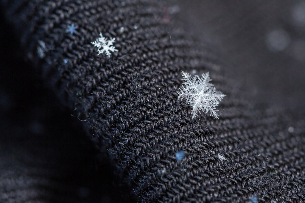 Winter Stars by kph129