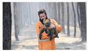 11th Jan 2020 - Our bushfire disaster casualties