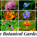 Ringve Botanical Garden 2019