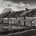 Dead Farm... by vignouse
