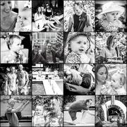 8th Jan 2020 - sydney lovelies