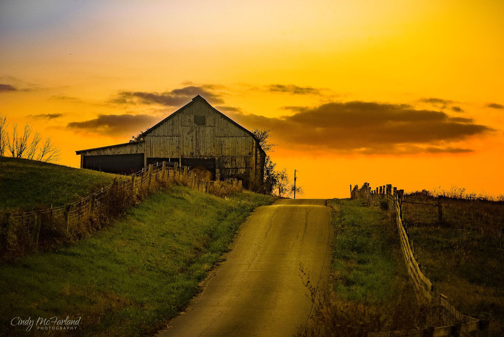 An evening drive in the country by cindymc