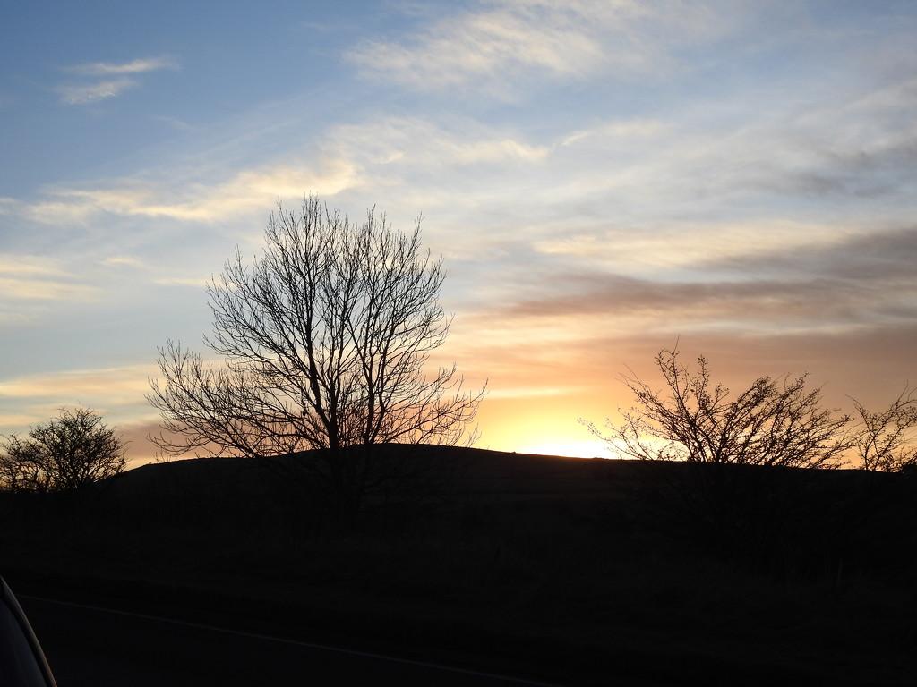 Sunset by oldjosh