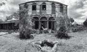 11th Jan 2020 - Haunted house.
