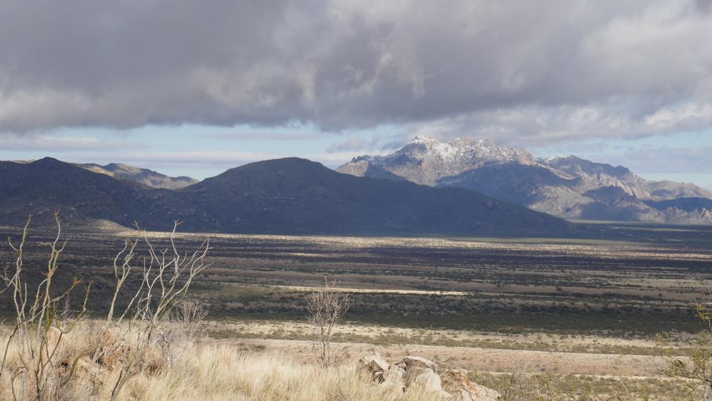 Elkhorn Ranch Arizona by swagman