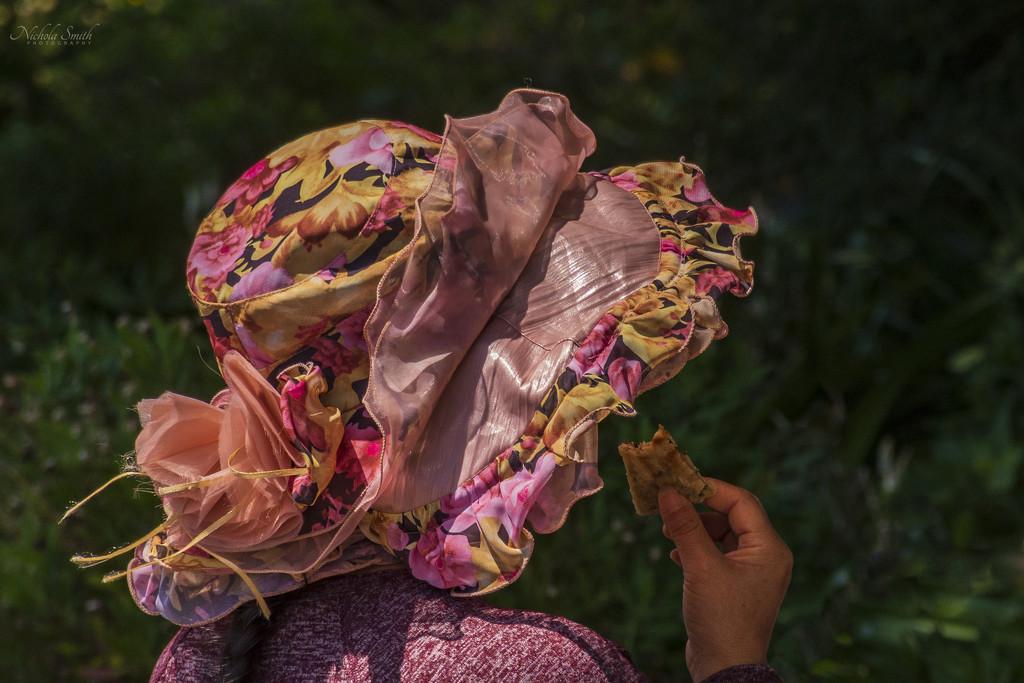 Summer Bonnet by nickspicsnz