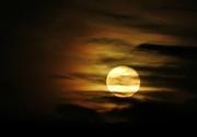 11th Jan 2020 - Cloudy Moon