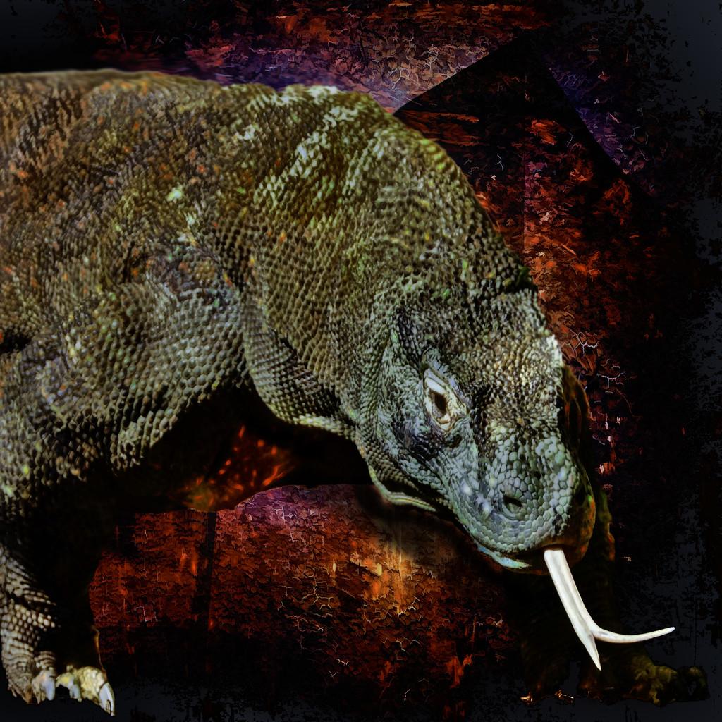 The Komodo Dragon by joysfocus