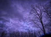11th Jan 2020 - Storm Front