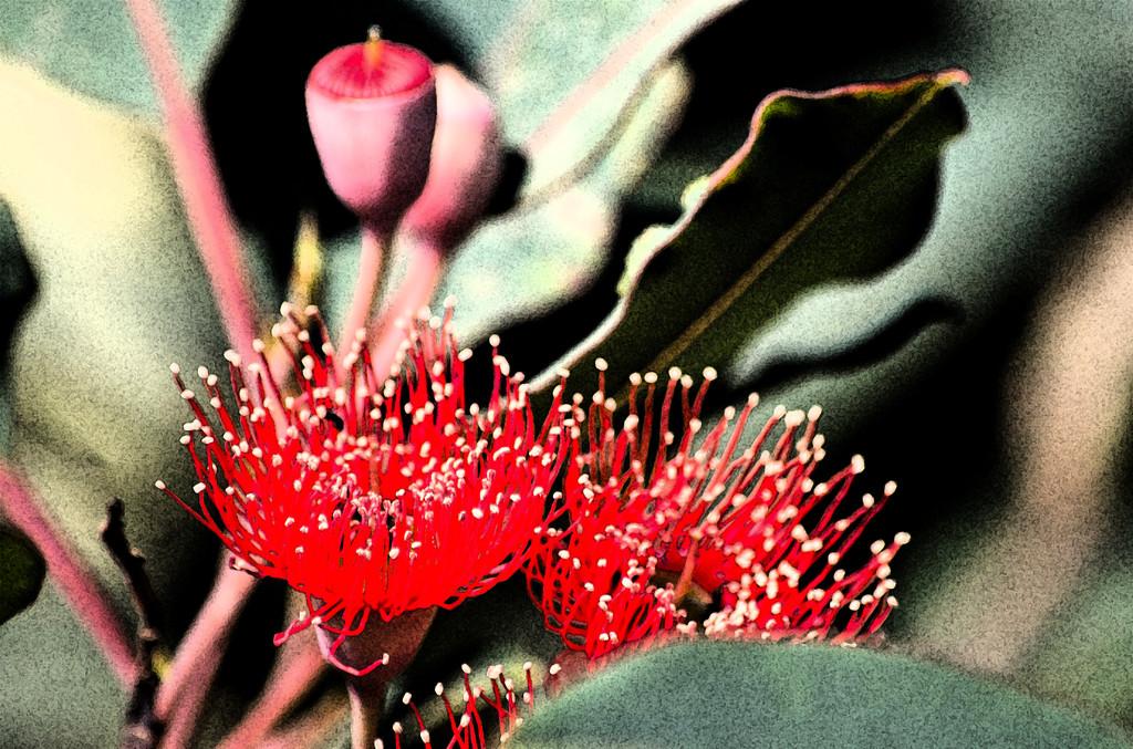 ETSOOI-116 - Gum Flowers by annied
