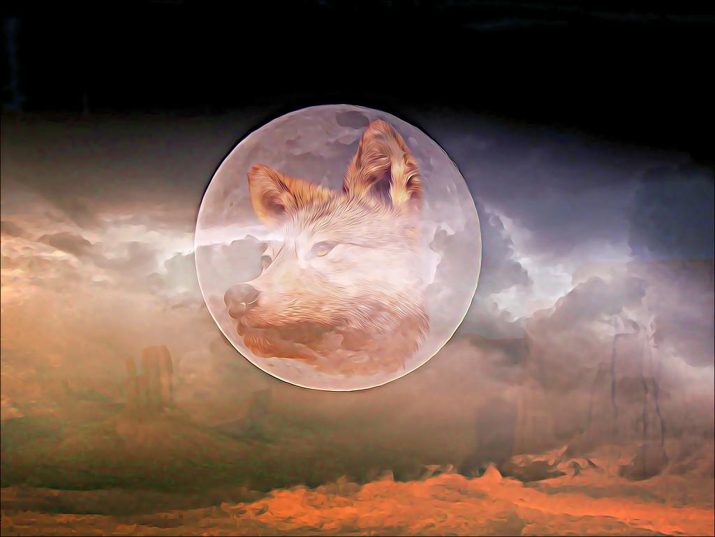 Wolf Moon by olivetreeann