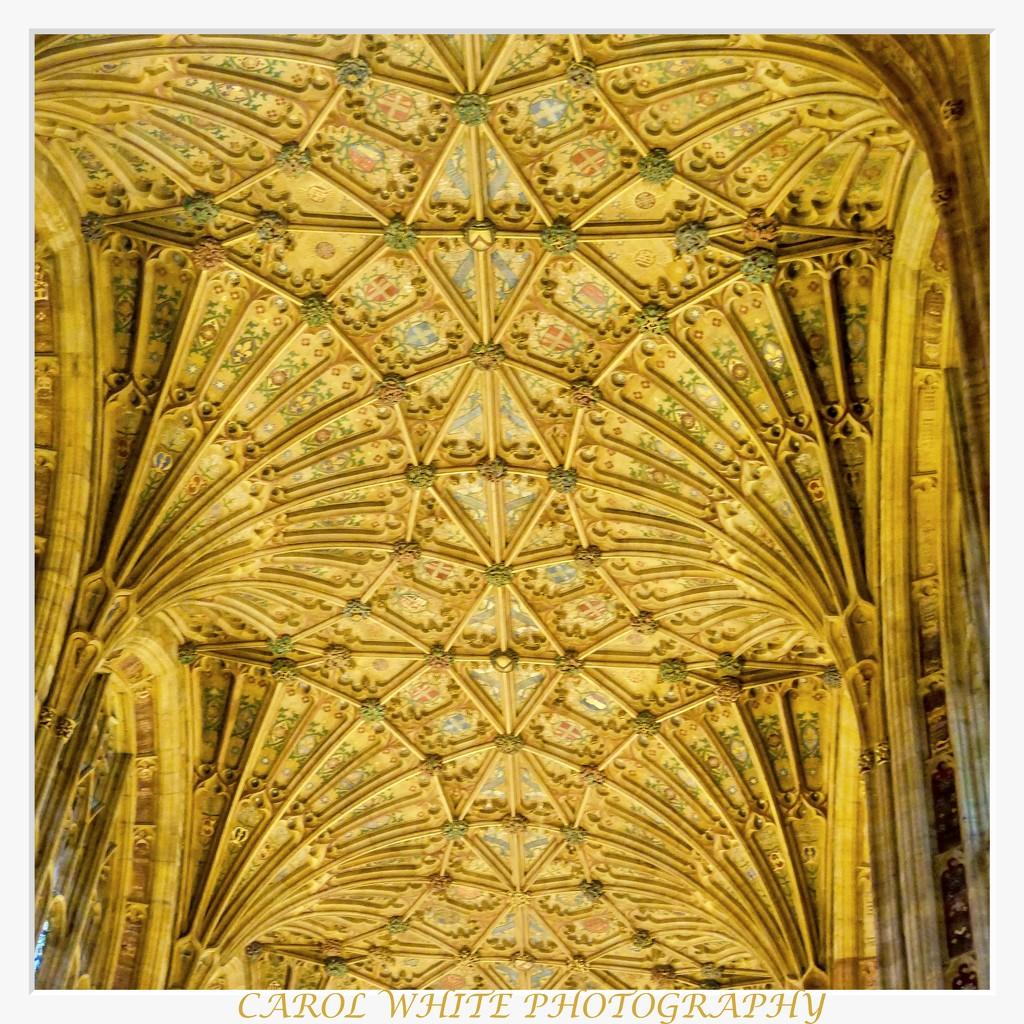 The Ceiling,Sherborne Abbey by carolmw