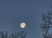 12th Jan 2020 - Full Moon Setting