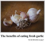 12th Jan 2020 - Garlic
