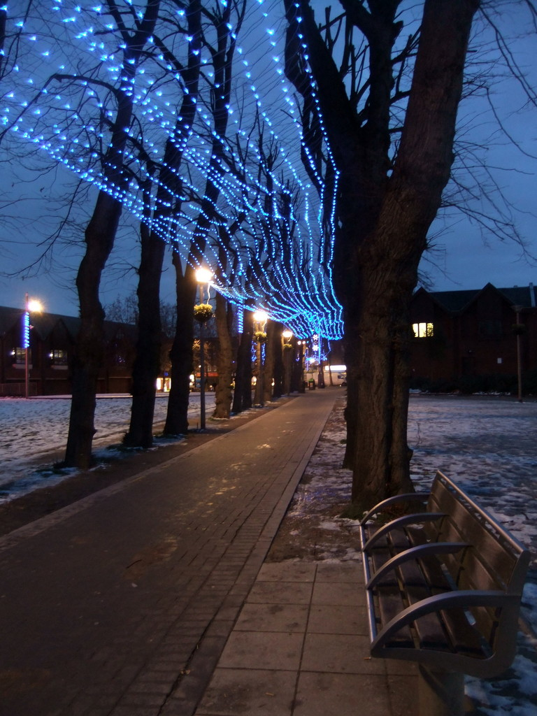 Christmas lights on lime tree walk 2010 by boxplayer