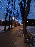 3rd Jan 2020 - Christmas lights on lime tree walk 2010