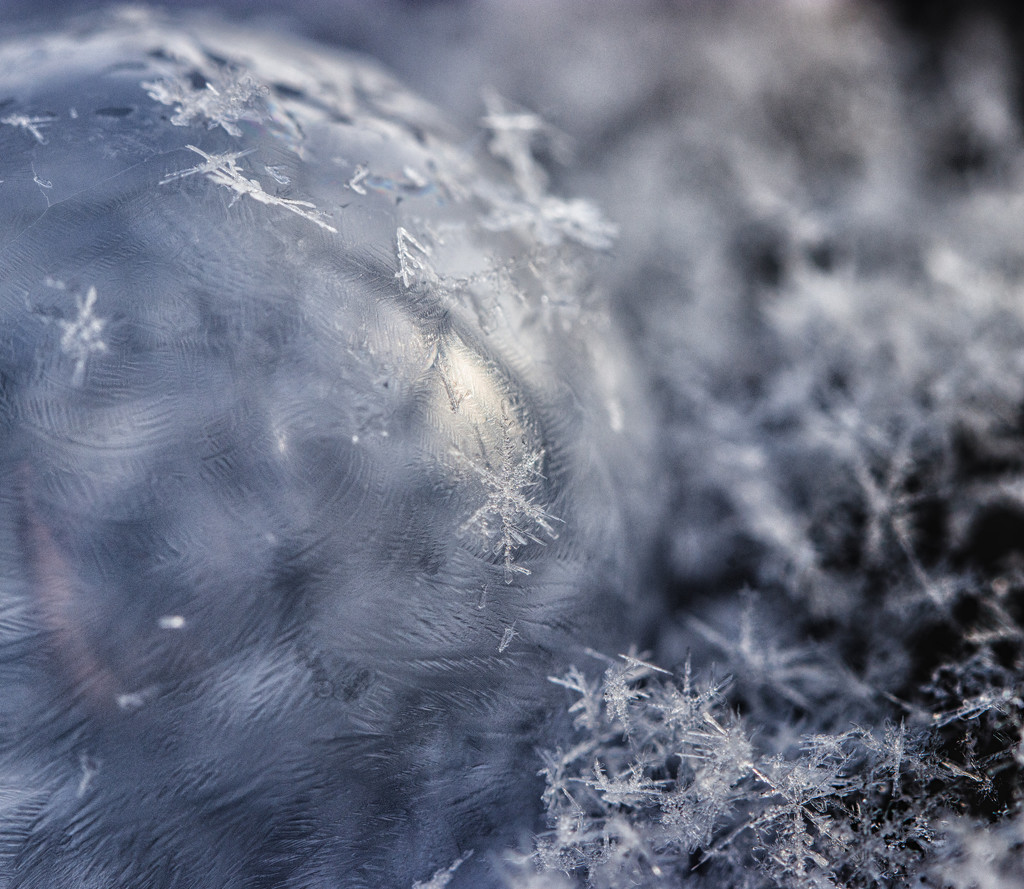 bubble snowflakes by aecasey