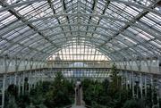 10th Jan 2020 - Temperate House, Kew Gardens