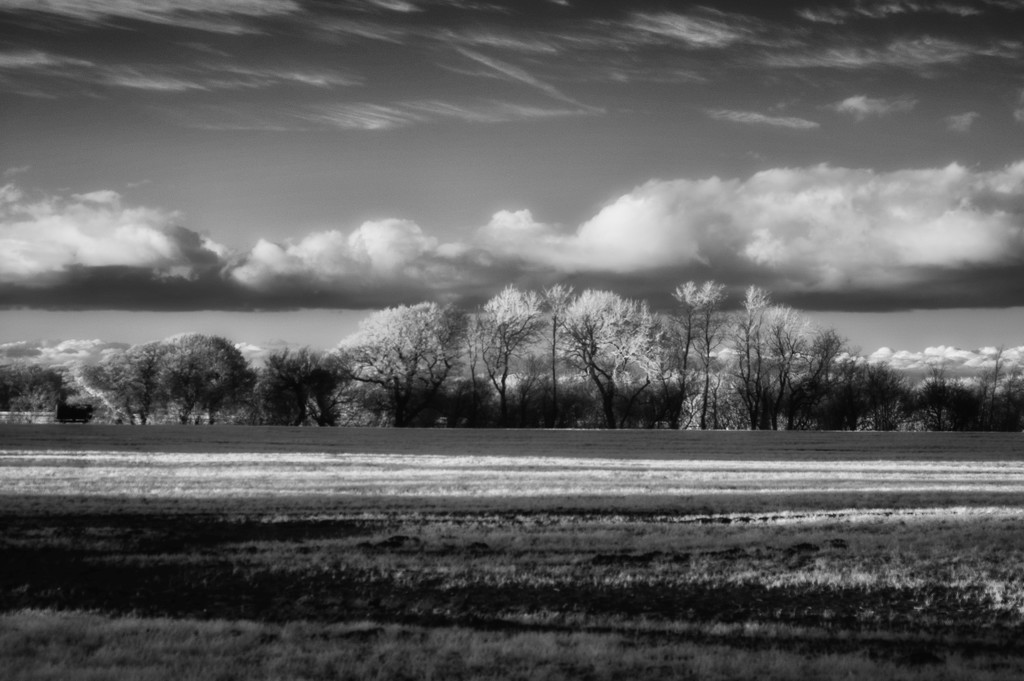 Lengthening Shadows by fbailey