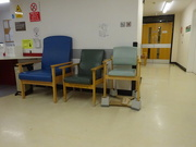 12th Jan 2020 - a greater variety of chair