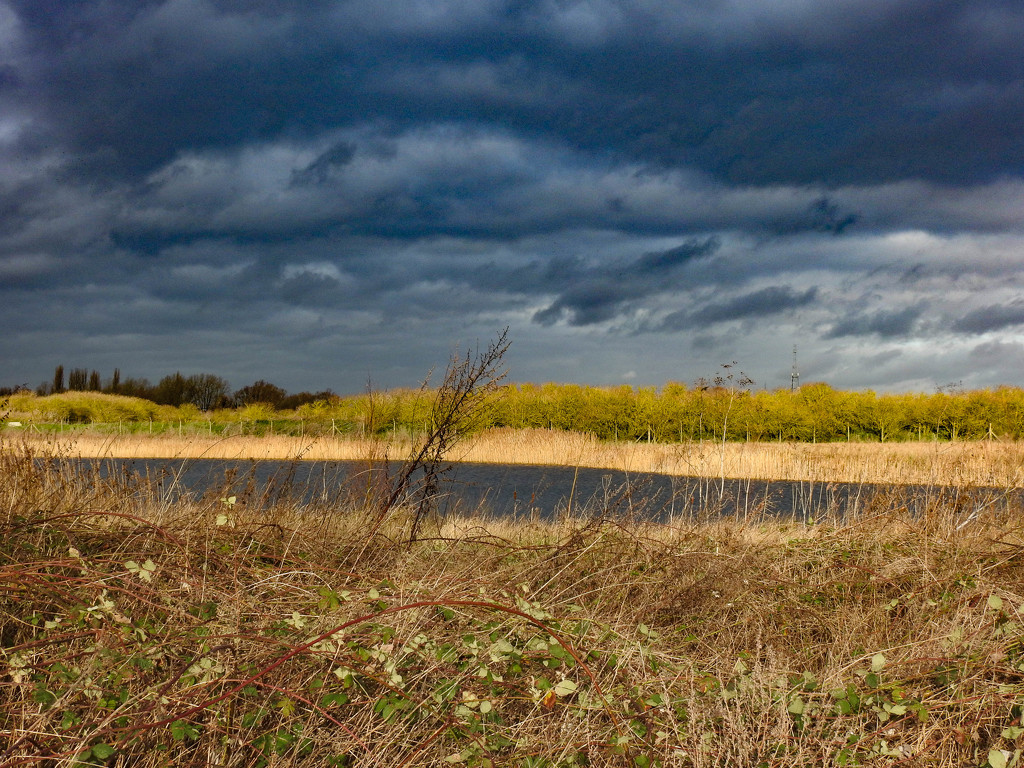 Storm clouds and sunshine by stevejacob