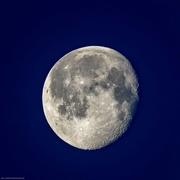 13th Jan 2020 -  Moon Setting