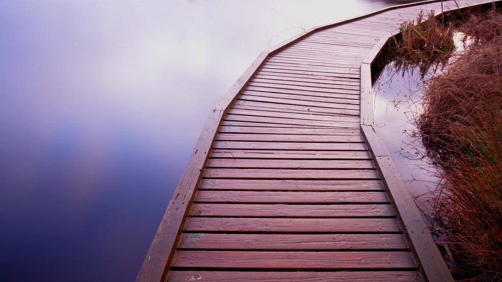 Boardwalk by moonbi