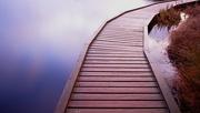 13th Jan 2020 - Boardwalk