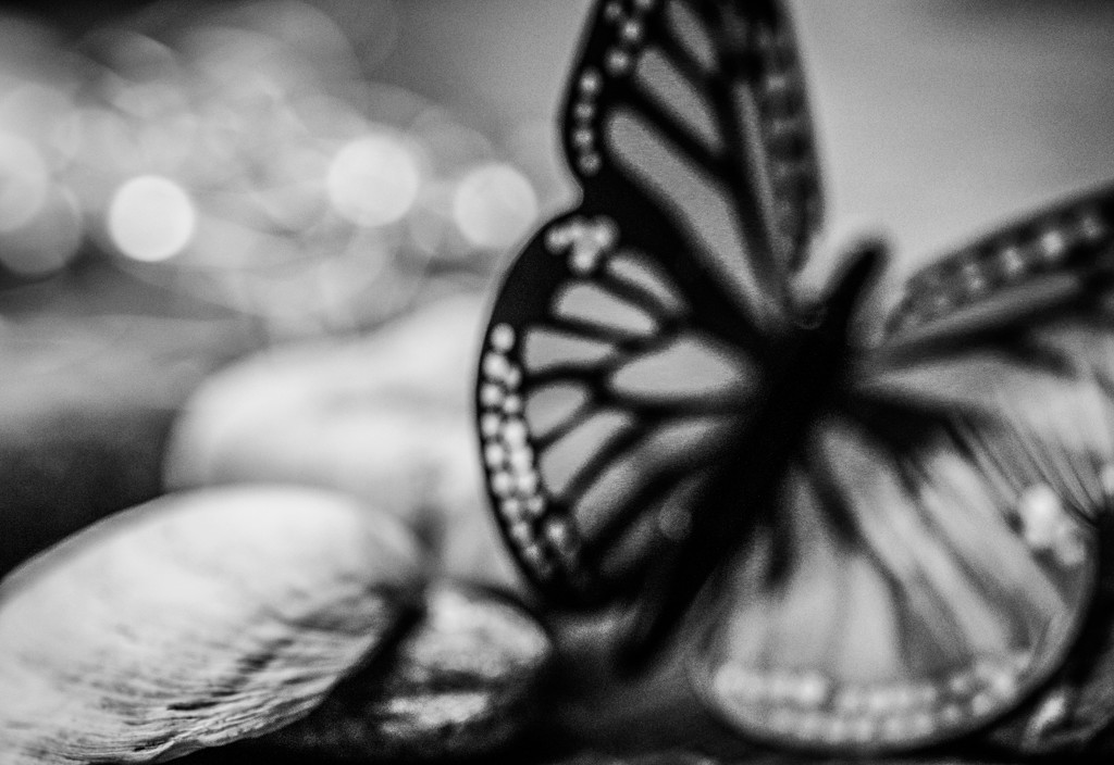 Migrating Monarch in Mono by mzzhope