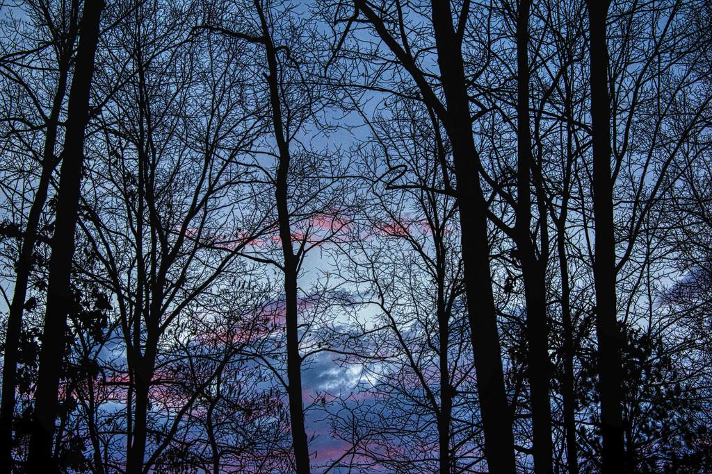 Sunrise Glimpse by k9photo
