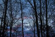 14th Jan 2020 - Sunrise Glimpse