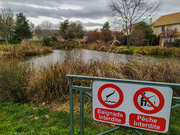14th Jan 2020 - No swimming, no fishing