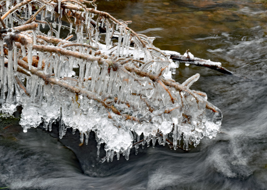 Ice Along Brook by kfpartist