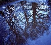 14th Jan 2020 - Reflection