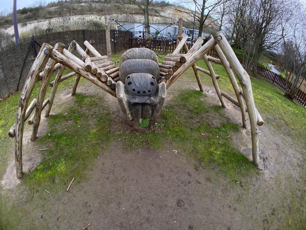 Spider in the Park! by bizziebeeme