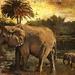 Elephant Walk by joysfocus