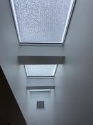14th Jan 2020 - Frozen skylights
