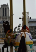 14th Jan 2020 - Horse-ride with a view on Notre Dame
