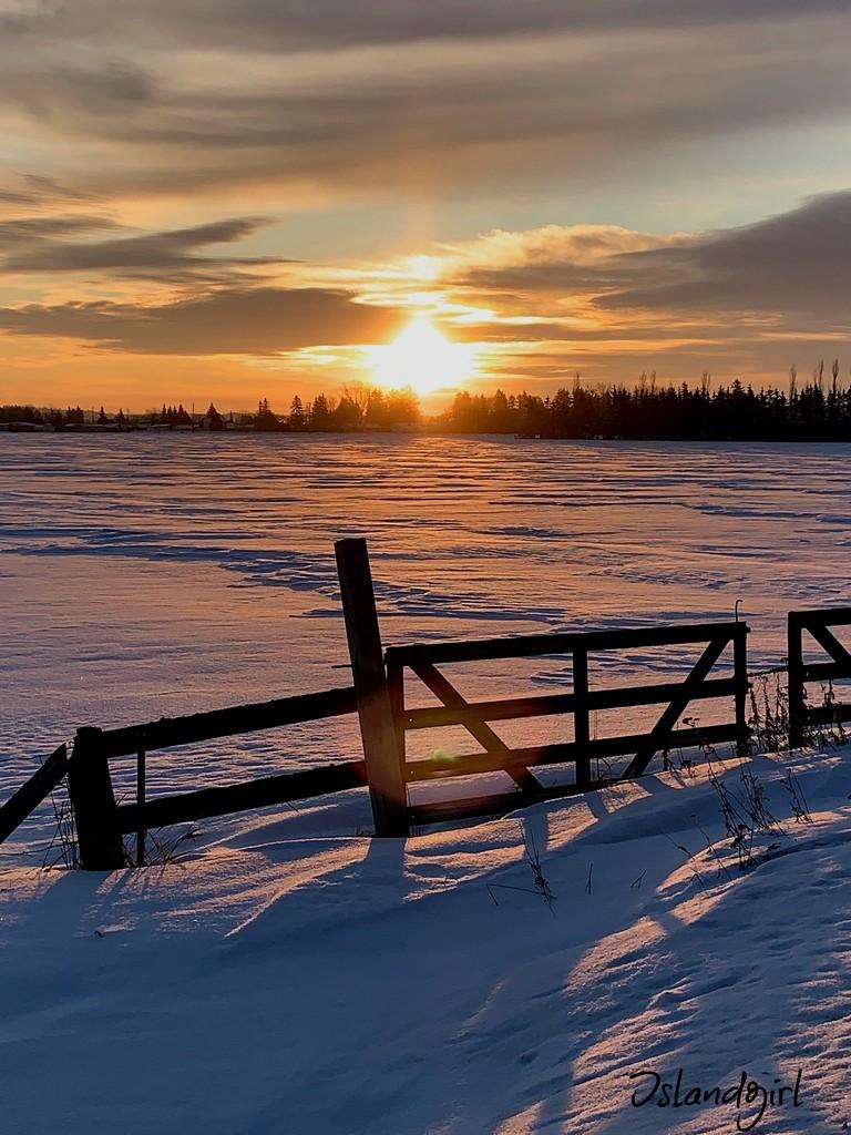 Winter Sunrise by radiogirl