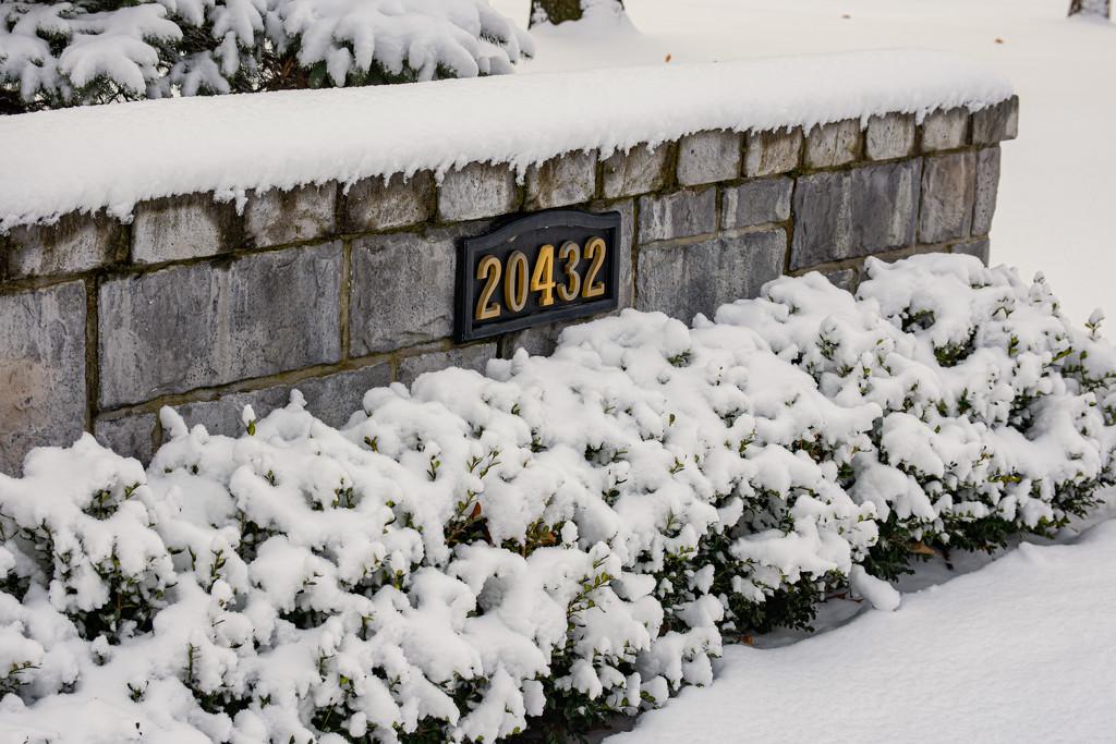 Brick Wall by farmreporter