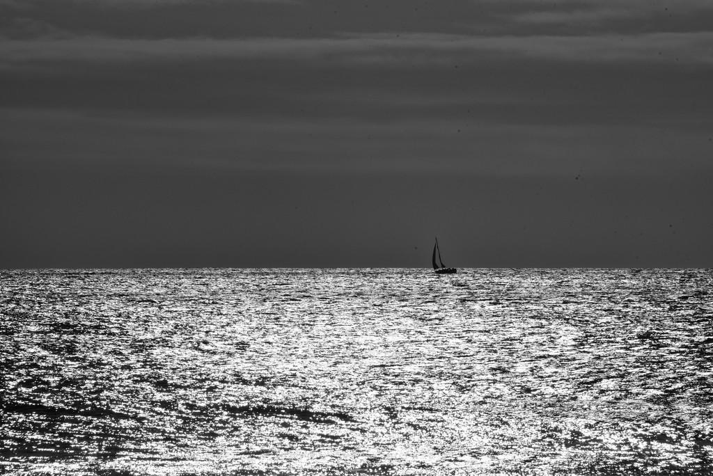 Lone Yacht by seanoneill