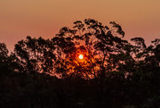 16th Jan 2020 - Bushfire Sunset