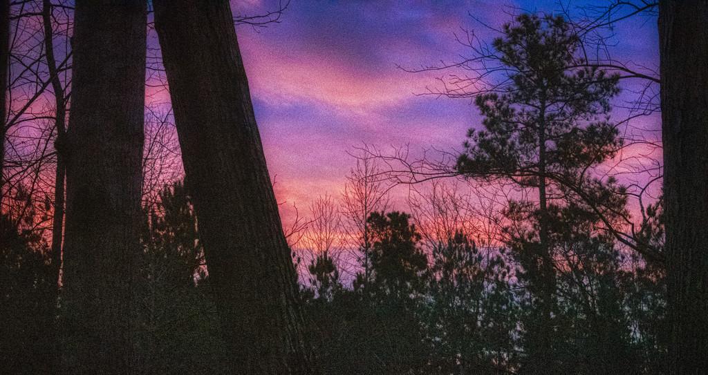 Sunrise 01172020 by k9photo