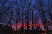 17th Jan 2020 - Fiery Sunrise
