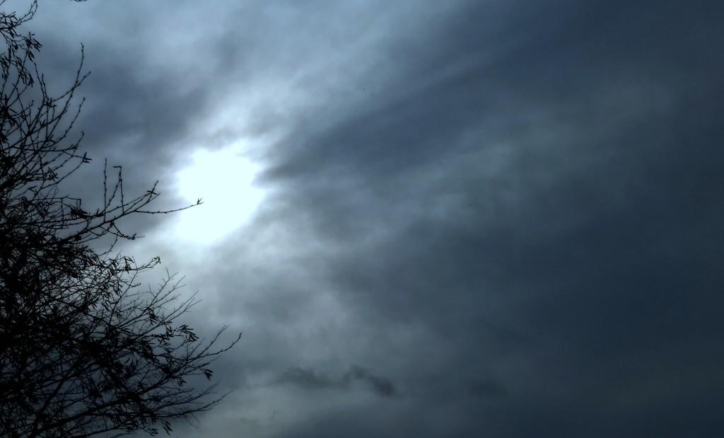Watery Winter Sun  by countrylassie