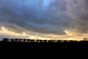18th Jan 2020 - Sundown behind an orchard hedge.