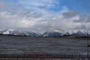 17th Jan 2020 - Montana Majesty