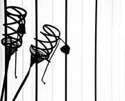 4th Jan 2020 - Spiral silhouettes