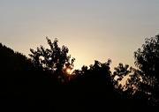 7th Jan 2020 - Sundown