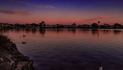 18th Jan 2020 - Ducks At Sunset